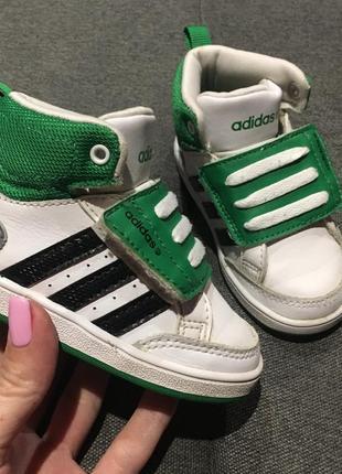 Высокие кроссовки хайтопы adidas