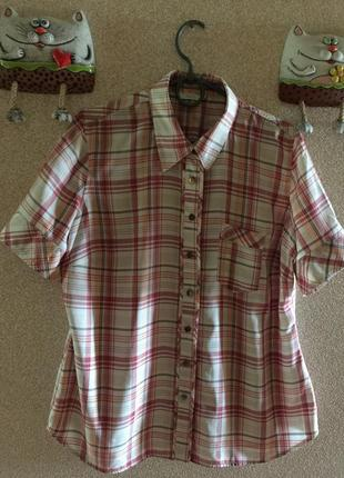 Классная рубашка с коротким рукавом #12