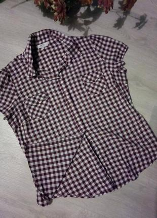 Рубашка от бренда papaya