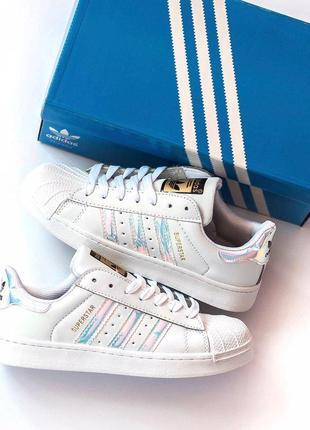 Крутые кроссовки adidas superstar в белом цвете из кожи (весна-лето-осень)😍