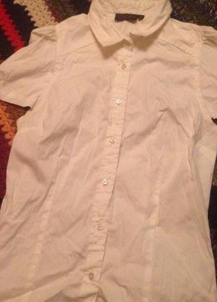 Модная рубашка/блузка topshop