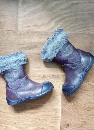 Демисезонные сапоги, ботинки clarks