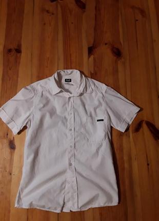 Брендова фірмова рубашка сорочка dolce&gabbana,оригінал, розмір s-m.
