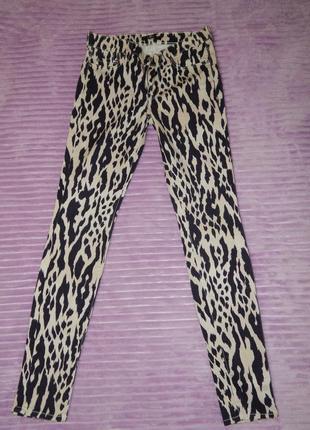 Модные  брюки леггинсы