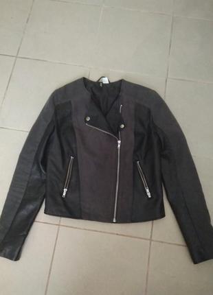 Куртка dividend