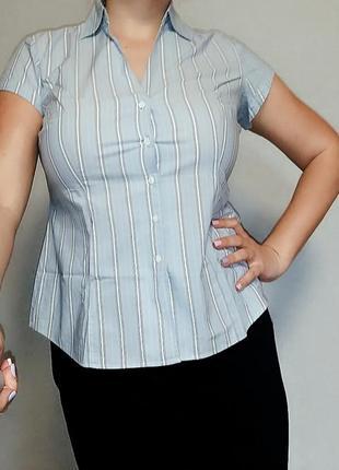 Голубая хлопковая рубашка m&s 14-16/ 50-52 размер