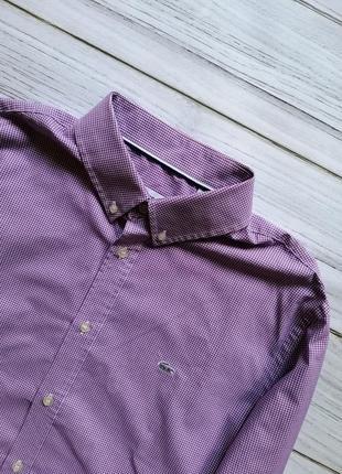 Новая рубашка lacoste