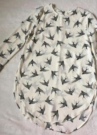 Супер блузка з ластівками
