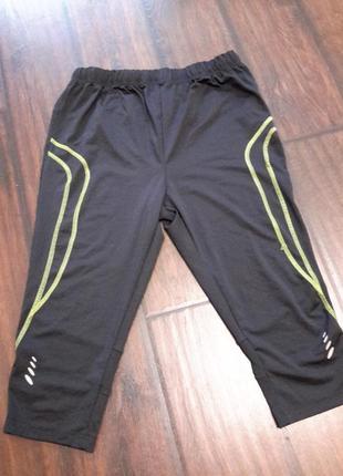 Спортивные штаны /капри/леггинсы