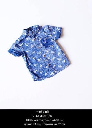 Коттоновая рубашка с коротким рукавом