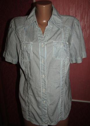 Рубашка р-р хл-14 бренд cecil