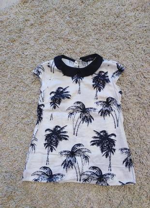 Блузка в пальмочки з класною спинкою