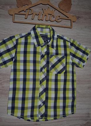 Рубашка шведка тениска 4г palomino