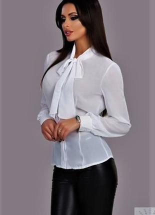 Белая прозрачная блуза