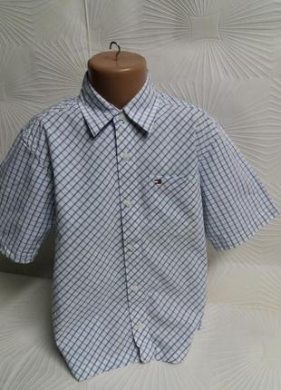 Отличная рубашка tommy hilfiger