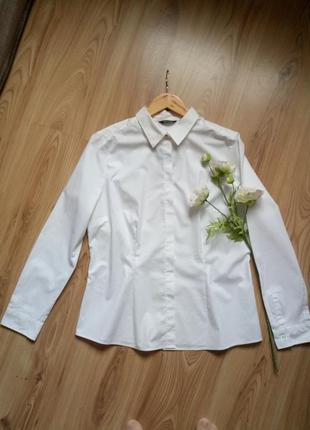 Классическая белая рубашка esmara. xl - l