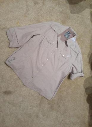 Бомбезная рубашка   бренд   cecil 14-16р