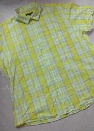 Рубашка мужская летняя с коротким рукавом большого размера хлопок george