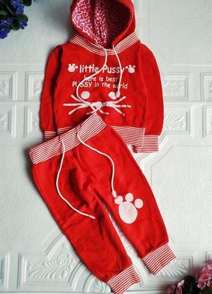 Теплый спортивный костюм (худи и штаны)