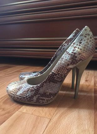 Туфли paolo conte со змеиный принтом