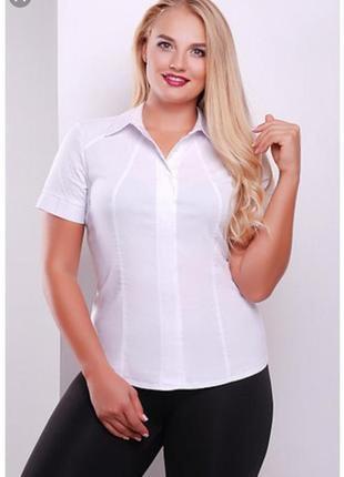 Новая фирменная рубашка bhs