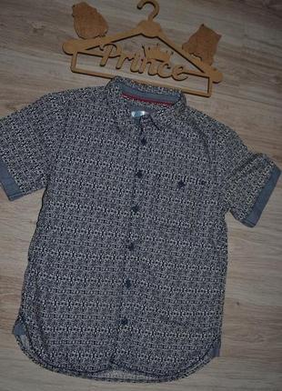 Рубашка шведка тениска m&co 9-10л 134-140л