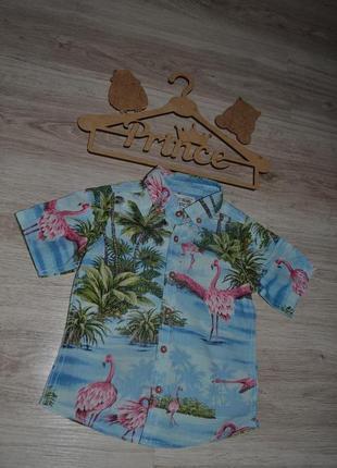 Рубашка шведка тениска  next р.92