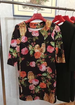 Сукня із совами