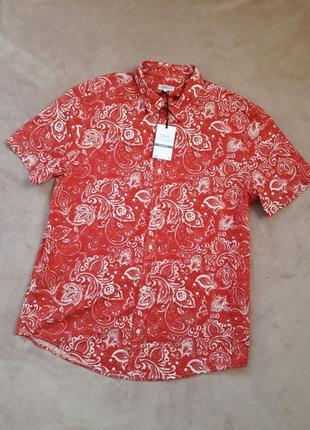 Новая яркая рубашка от next p.l
