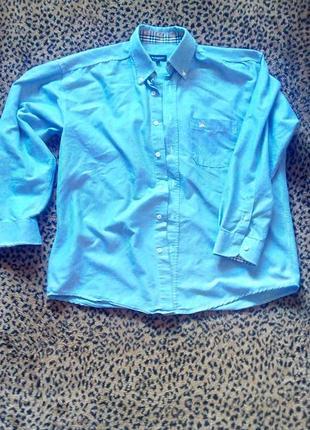 Синяя рубашка burberry london