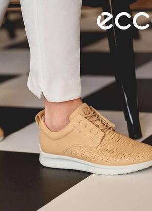 Кожаные кроссовки с перфорацией экко ecco aquet р.37 новые таиланд