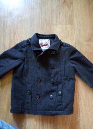 Пальто та куртка