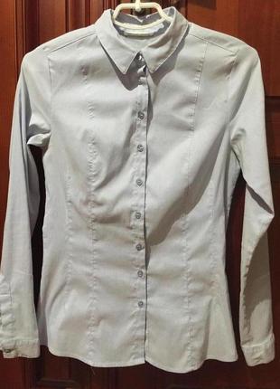 Рубашка/блузка полосатая /в полоску , базовая