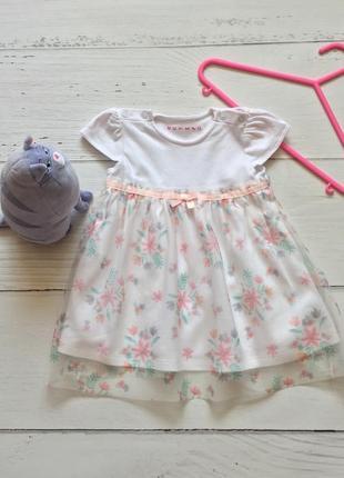 Нежное платье для девочки 3-6 месяцев hutmeg