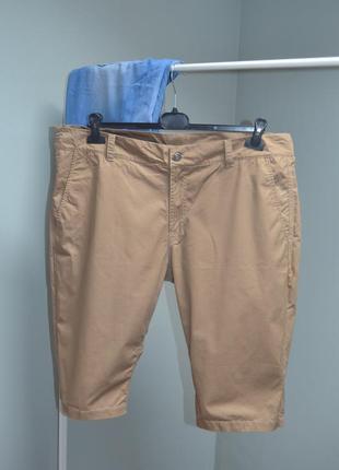 Коттоновые мужские шорты