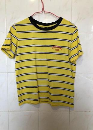 Желтая футболка блузка в полоску с принтом словами zara2 фото