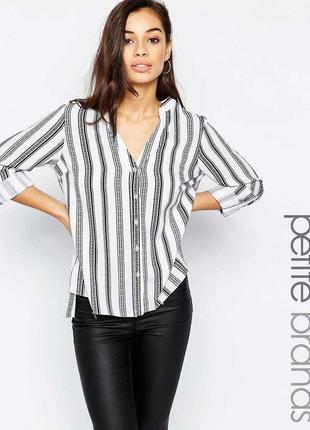 Блуза черно белая в полоску zara zara1 фото
