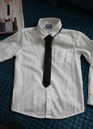 Біла сорочка з краваткою