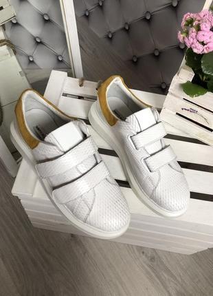 Супер кроссовки, фирменные, roberta della croce40p3 фото