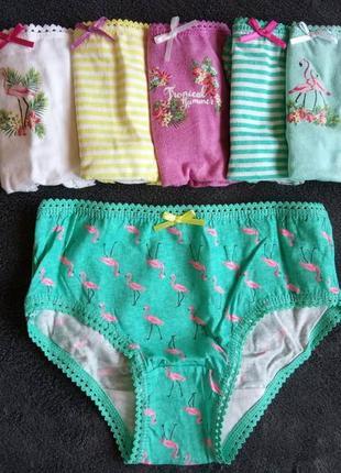 Трусики для девочки 3-4 лет в прикольный принт фламинго примарк