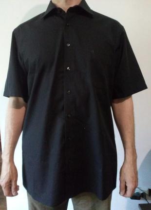 Мужская рубашка с коротким рукавом  olymp