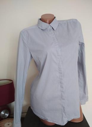 Стильная актуальная котоновая рубашка в мелкую полоску