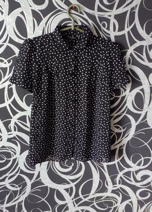 Полупрозрачная блуза в горошек
