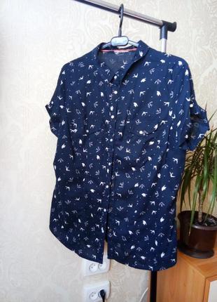 Блузка в птичках, на кнопках, с птичками