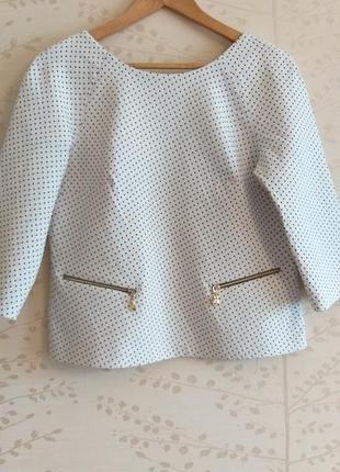 Костюм в горошек пиджак с шортами  беременность,