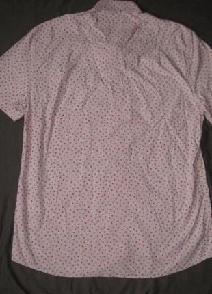 Peter werth (l/xl) рубашка мужская натуральная2 фото