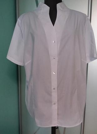 Белая блуза с коротким рукавом и оригинальной горловиной большого размера