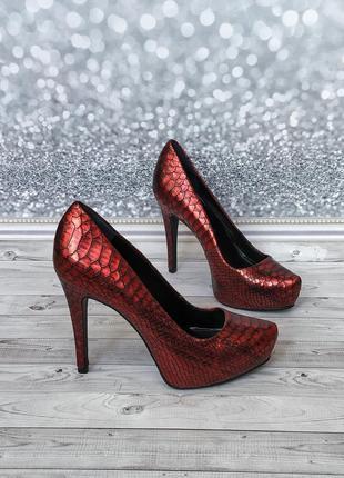 36-37р кожа!новые франция s.marina,бордовые туфли ,лодочки,змеиный принт