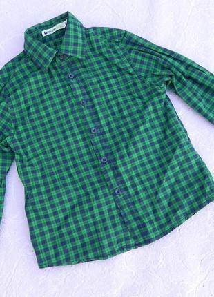 Рубашка хлопок glo-story 4года 104см