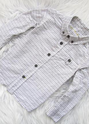 Качественная и стильная рубашка nutmeg
